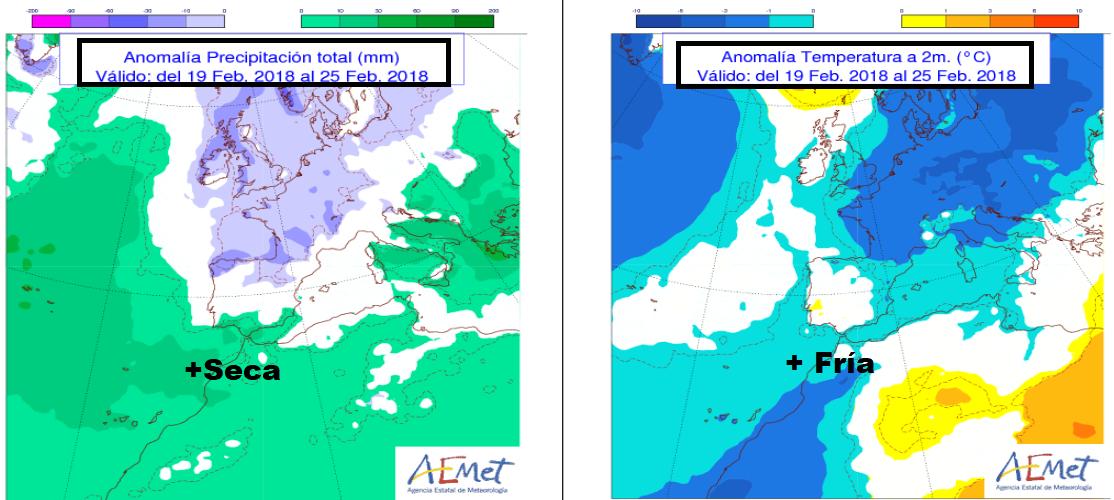 Anomalías de temperaturas y precipitación semanal por AEMET.Meteosojuela