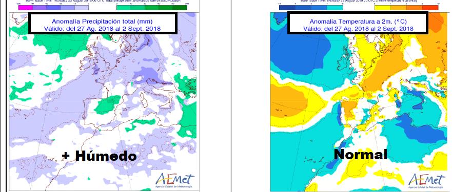Anomalías semanales temperatura y precipitación AEMET.Meteosojuela