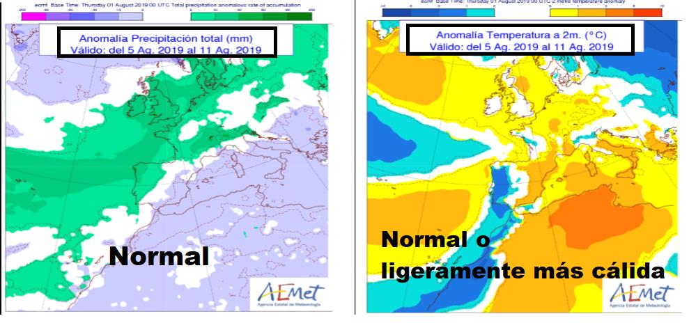 Anomalía de temperatura y precipitación AEMET. Meteosojuela