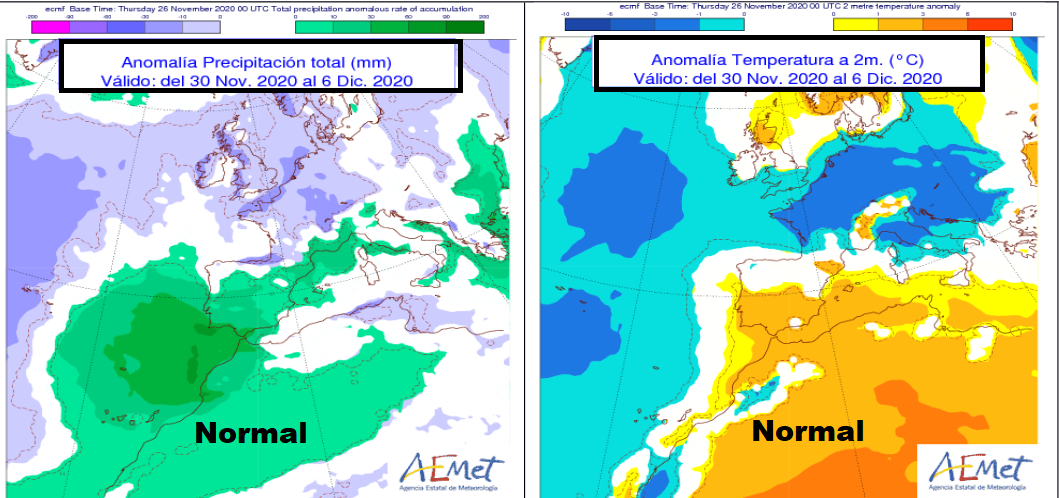 Anomalías de Temeratura y Precipitación ECMWF. Meteosojuela